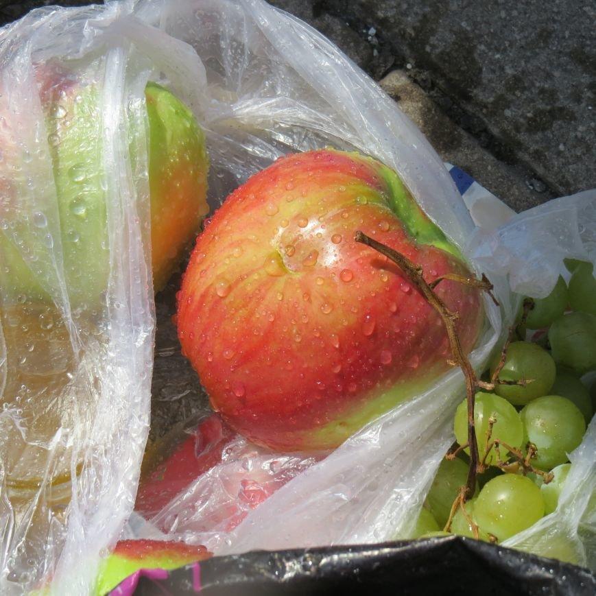 Яблочный день (ФОТОПЯТНИЦА), фото-31