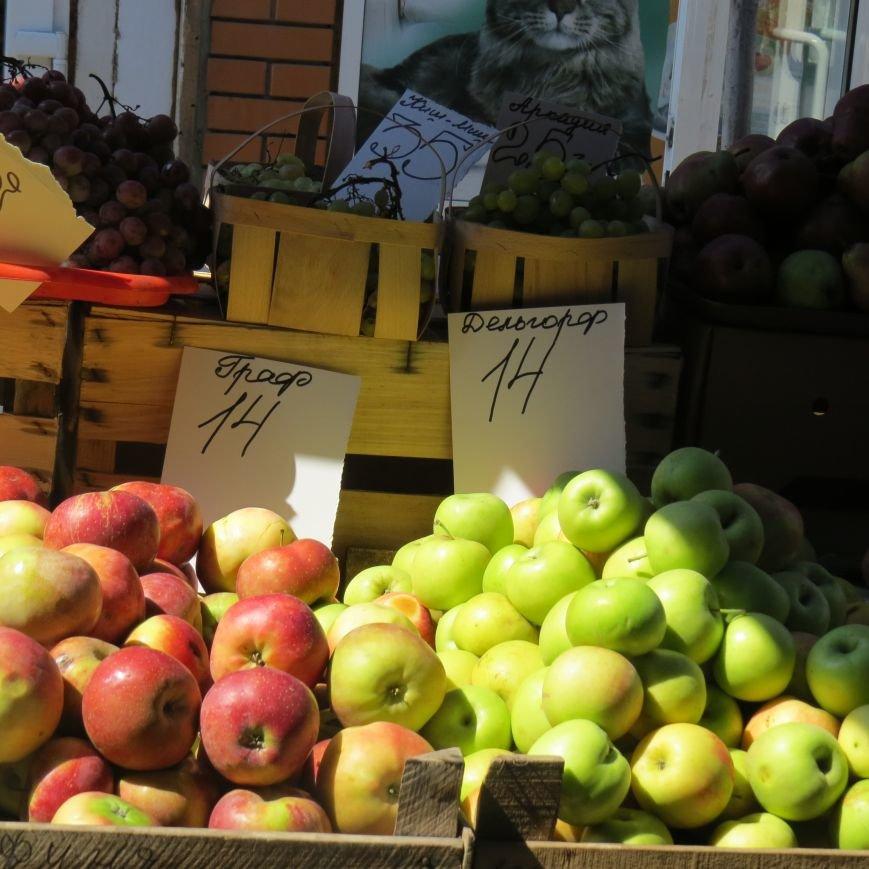 Яблочный день (ФОТОПЯТНИЦА), фото-40