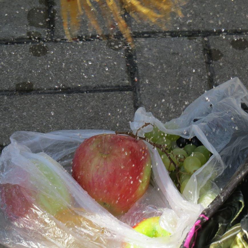 Яблочный день (ФОТОПЯТНИЦА), фото-29