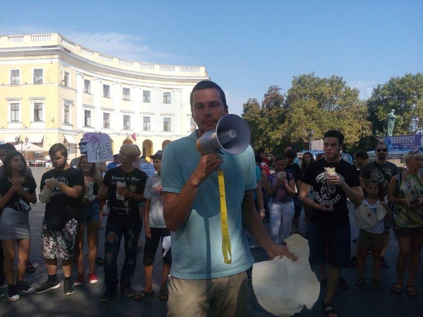 В Одессе активисты едва не закидали мэрию шаурмой (ФОТО, ВИДЕО), фото-2