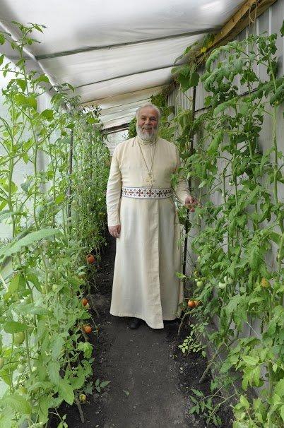 4-В тепличке выращивает огурцы и помидоры