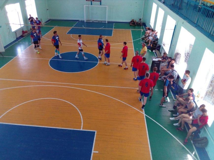 фест волейбол