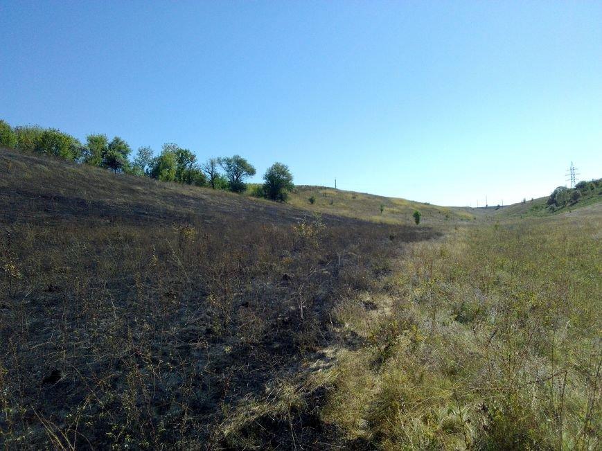 Фото: під Білою Церквою горять поля, фото-1
