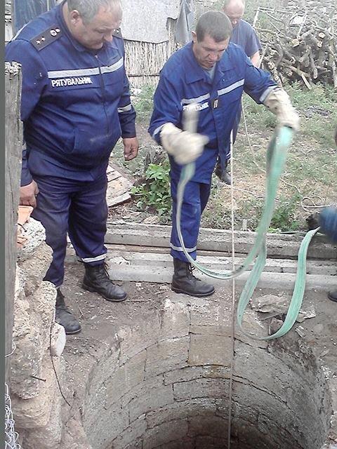 На Николаевщине спасли жеребенка, упавшего в колодец (ФОТО), фото-2