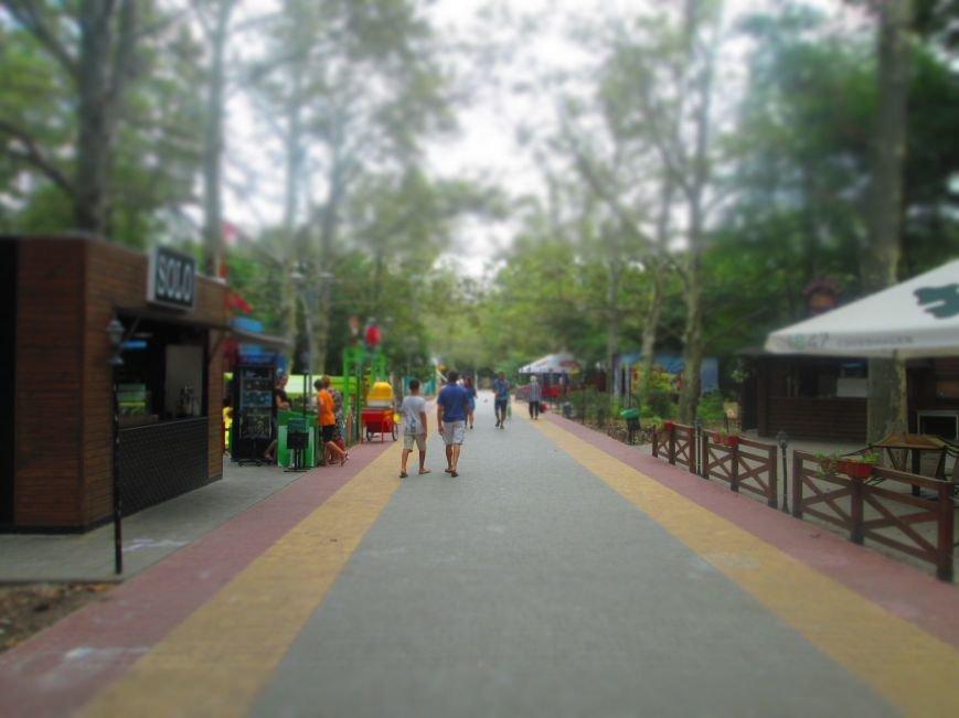 Одесский парк преобразили плиткой (ФОТО), фото-12
