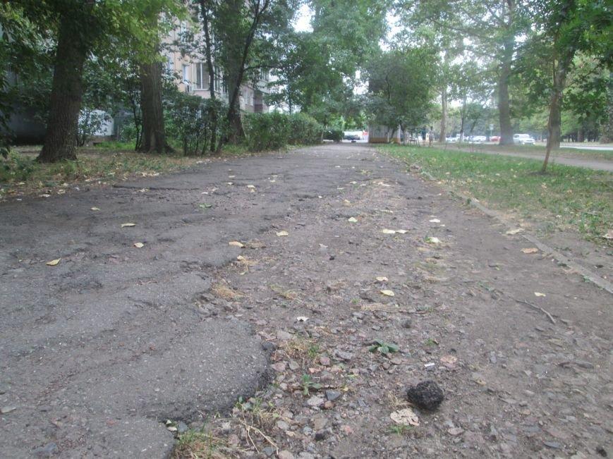 В Одессе пенсионеры жалуются на разбитую улицу (ФОТО), фото-5