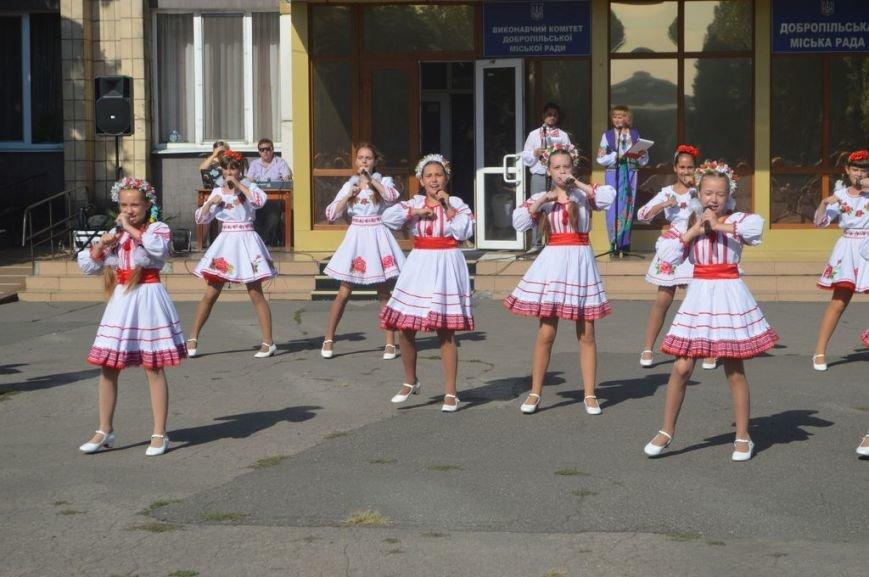 В Доброполье отметили День флага, фото-2