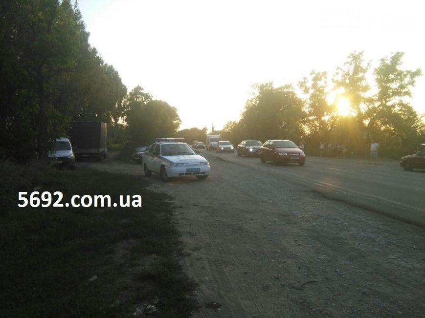 Смертельное ДТП под Каменским возле Елизаветовского котлована: мотоциклист сбил пешехода, фото-4