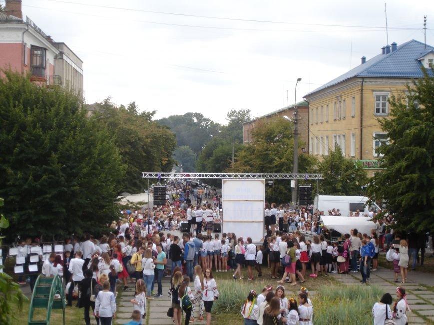 ФОТО: Як Біла Церква відзначила День Незалежності, фото-18
