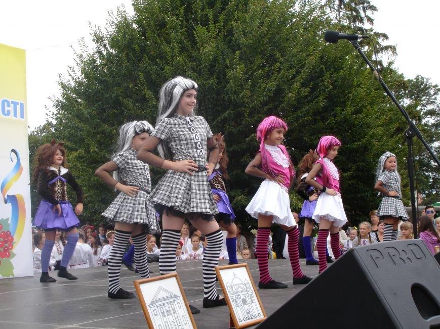 ФОТО: Як Біла Церква відзначила День Незалежності, фото-12