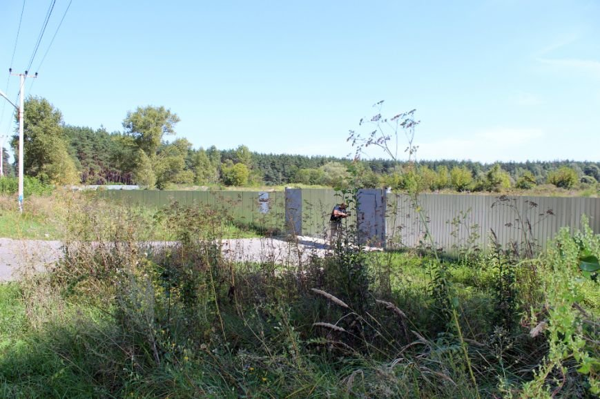 Белгородские натуралисты обеспокоились стройкой возле болота с краснокнижными орхидеями, фото-1