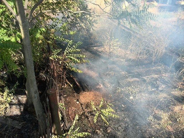В Николаеве спасатели ликвидировали пожар сухой травы на территории 1000 кв. метров (ФОТО), фото-1