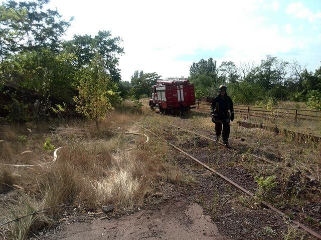 В Николаеве спасатели ликвидировали пожар сухой травы на территории 1000 кв. метров (ФОТО), фото-2