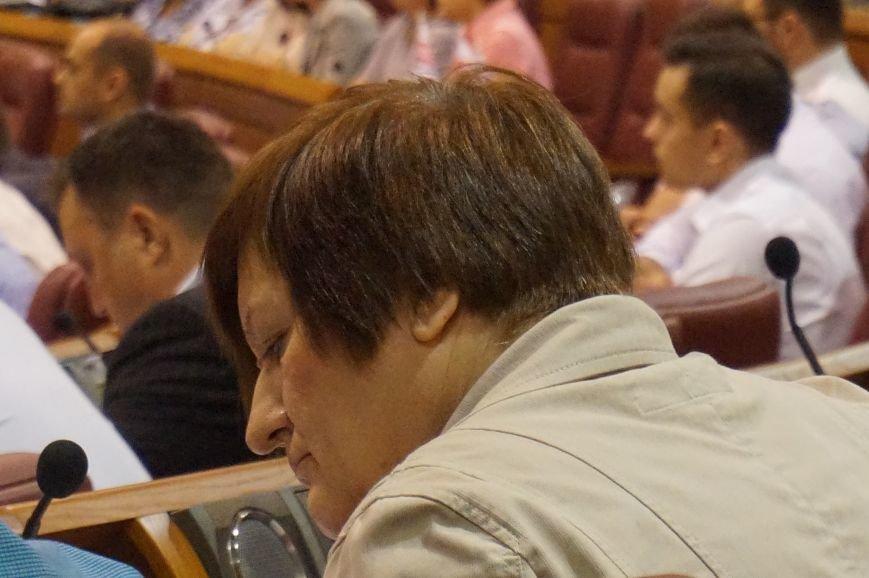 """""""Активных и громких"""" криворожан не будут выгонять с пленарного заседания... пока (ФОТО), фото-9"""