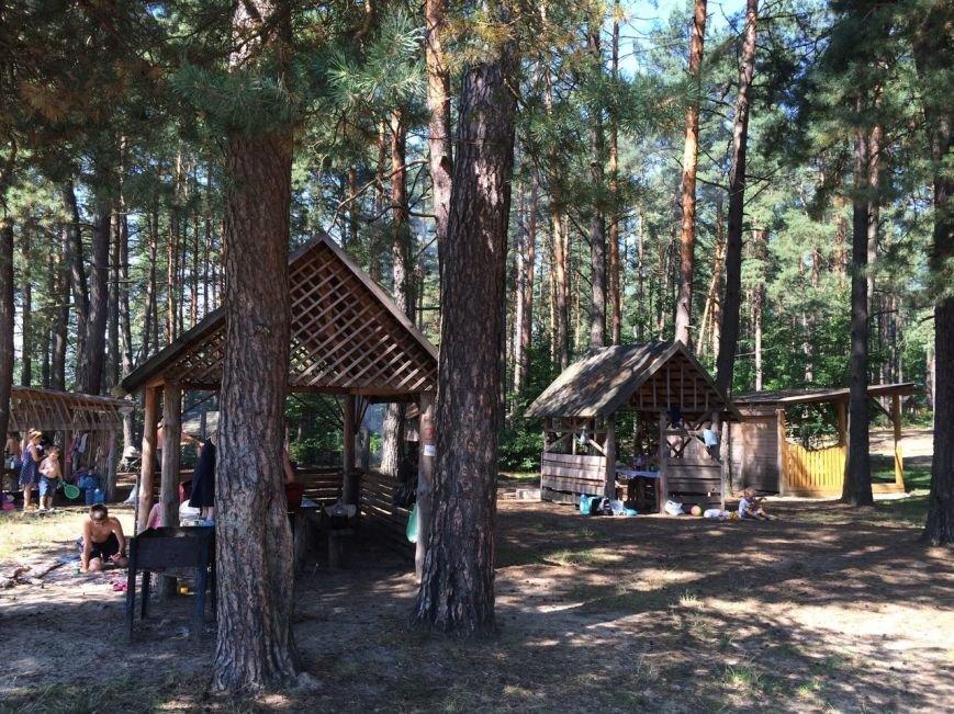 Тест-драйв озер поблизу Львова: їдемо відпочивати у Верещицю, фото-8