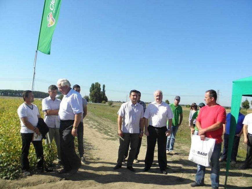 У Новоград-Волинському районі відбувся День поля, фото-1