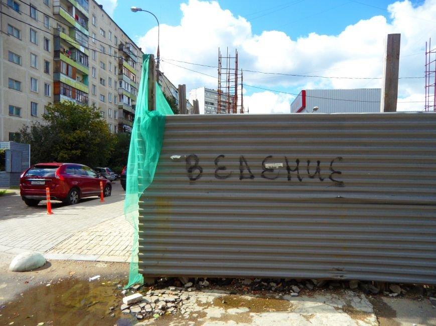 Сгоревший магазин на Центральной улице в Троицке захламляет территорию второй год, фото-3