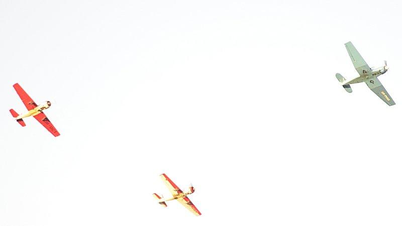 Минишоу авиации над Одессой и квартиры в подарок олимпийским чемпионам-одесситам (ФОТО), фото-2
