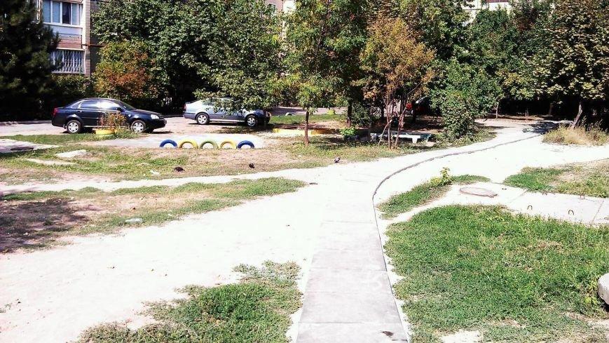 Криворожане за собственные средства уложили три пешеходные дорожки (ФОТО), фото-13