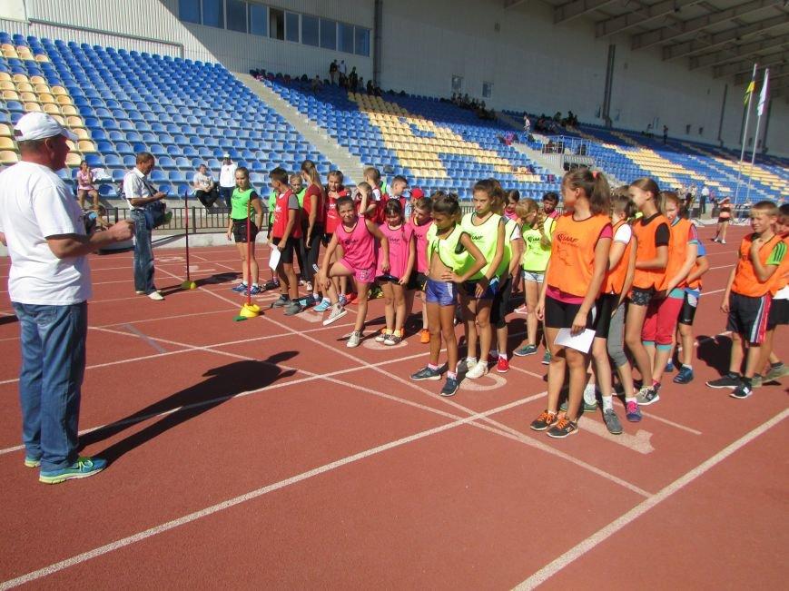 Чемпионат области по легкой атлетике и Олимпийский урок прошли в Бахмуте, фото-1