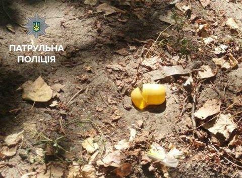 В Кременчуге копы задержали группу наркоманов на детской площадке, фото-2