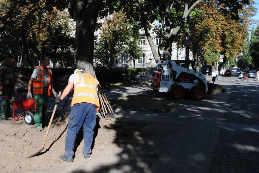 Грибной компост, земля и днепровская вода: в сквере имени Бабаева всерьёз взялись за газон (фото и видео), фото-8