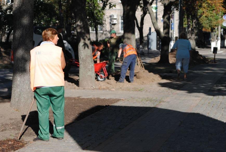 Грибной компост, земля и днепровская вода: в сквере имени Бабаева всерьёз взялись за газон (фото и видео), фото-6