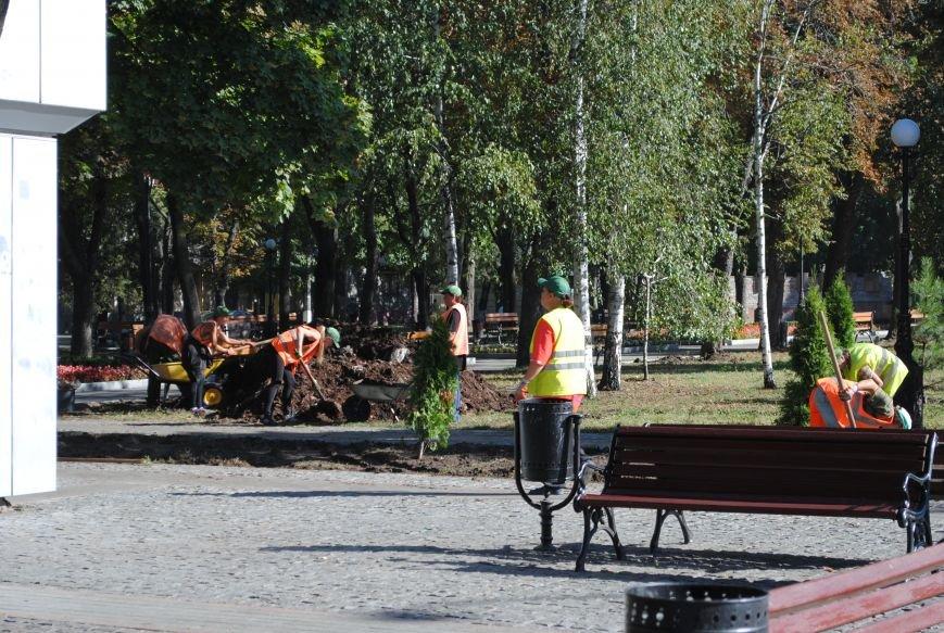 Грибной компост, земля и днепровская вода: в сквере имени Бабаева всерьёз взялись за газон (фото и видео), фото-16