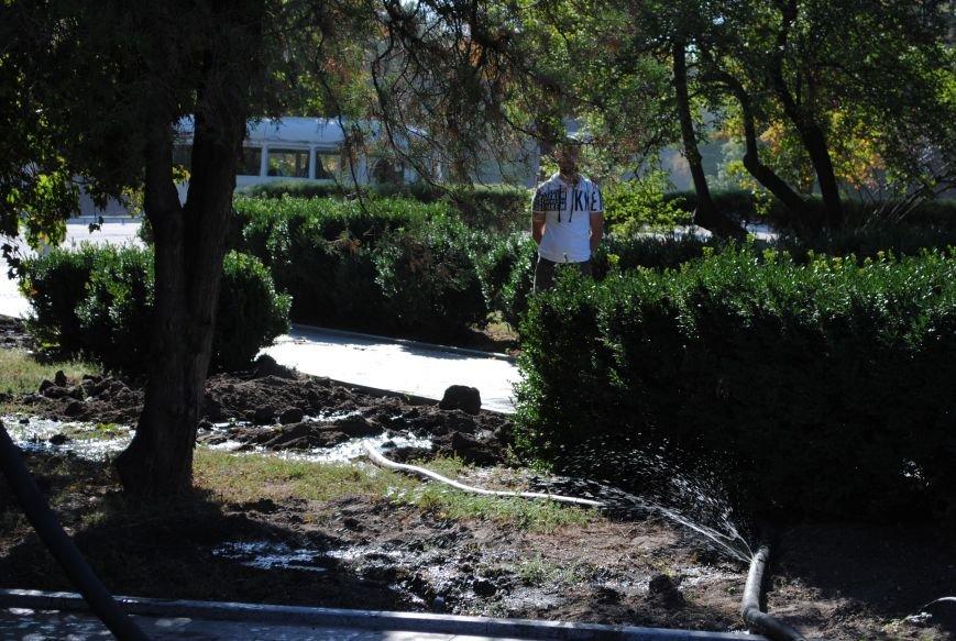 Грибной компост, земля и днепровская вода: в сквере имени Бабаева всерьёз взялись за газон (фото и видео), фото-13