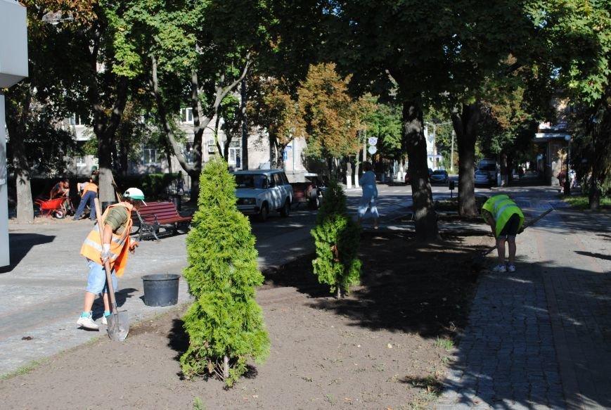 Грибной компост, земля и днепровская вода: в сквере имени Бабаева всерьёз взялись за газон (фото и видео), фото-5