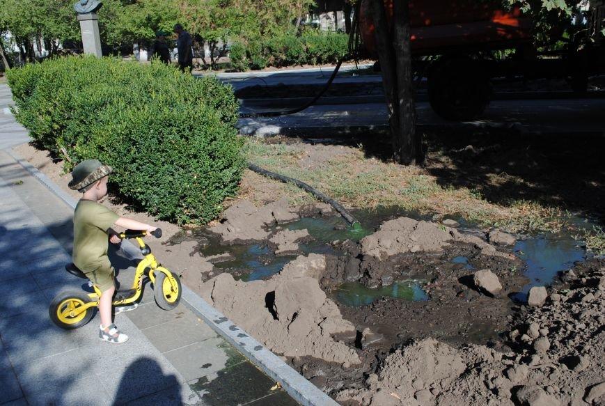 Грибной компост, земля и днепровская вода: в сквере имени Бабаева всерьёз взялись за газон (фото и видео), фото-15