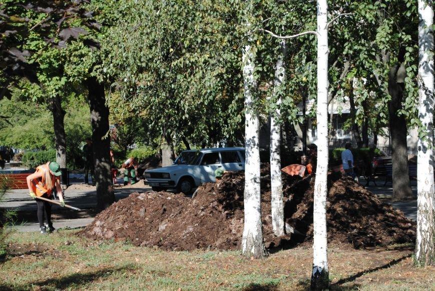 Грибной компост, земля и днепровская вода: в сквере имени Бабаева всерьёз взялись за газон (фото и видео), фото-1