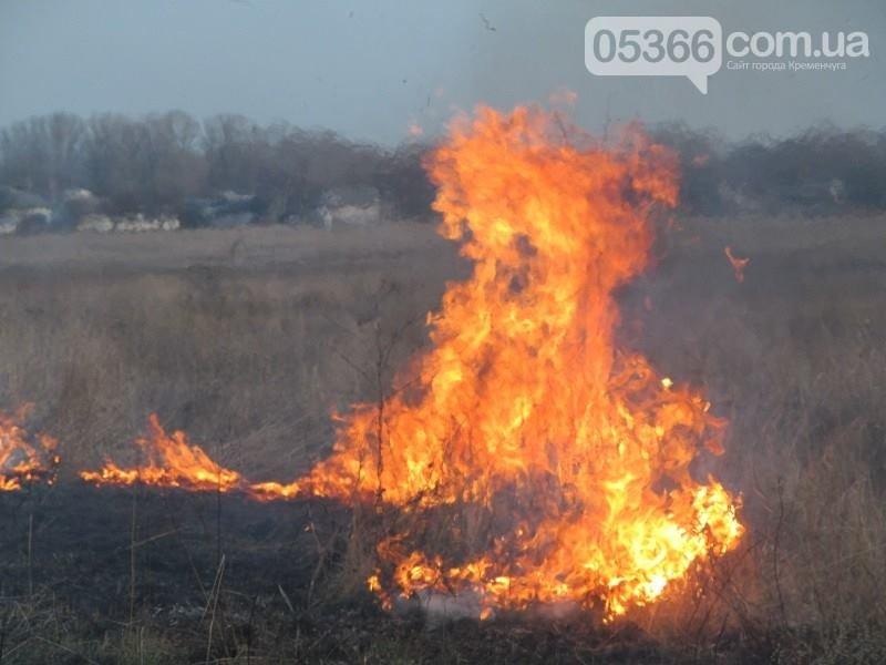 Якщо ви підпалюєте суху траву та листя - готуйтесь нести адміністративну відповідальність, фото-1