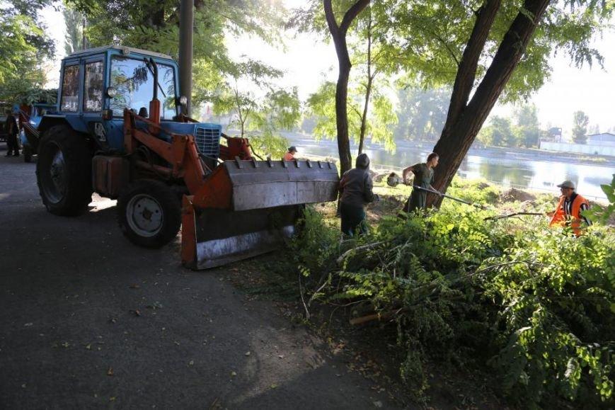Реконструкция Городского сада должна быть закончена к Дню города (фото и видео), фото-3