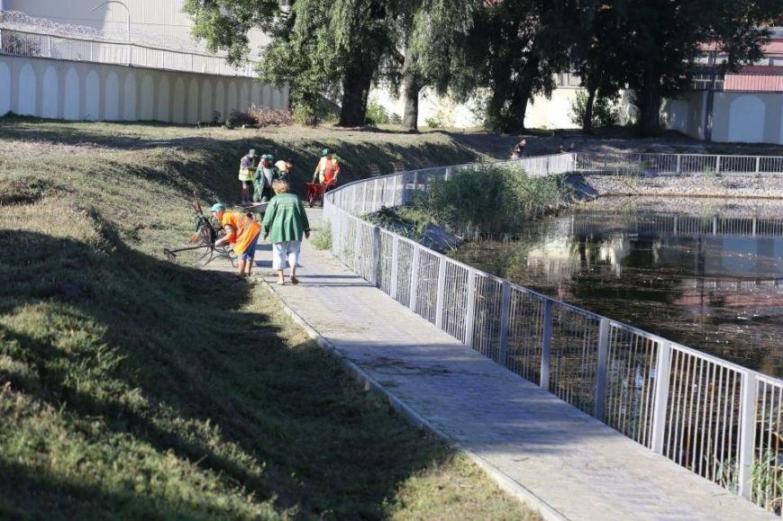 Реконструкция Городского сада должна быть закончена к Дню города (фото и видео), фото-11