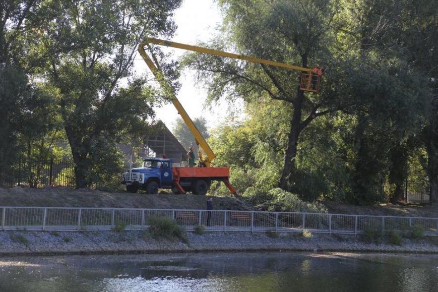 Реконструкция Городского сада должна быть закончена к Дню города (фото и видео), фото-6