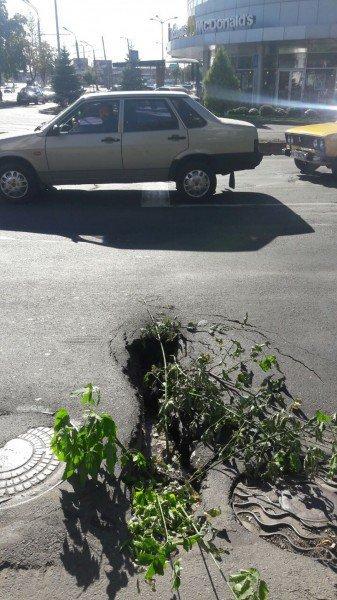 В Кривом Роге на проезжей части провалилось дорожное покрытие (ФОТО), фото-1