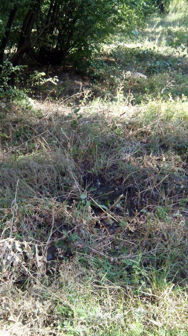 В Кривом Роге 2 недели питьевой водой поливается бурьян во дворе (ФОТО), фото-5