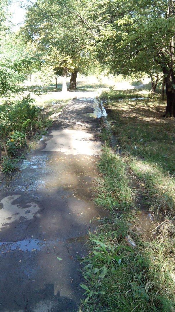 В Кривом Роге 2 недели питьевой водой поливается бурьян во дворе (ФОТО), фото-4