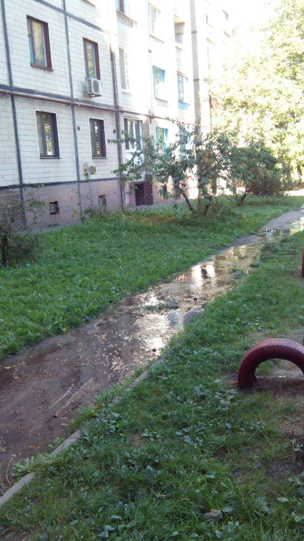 В Кривом Роге 2 недели питьевой водой поливается бурьян во дворе (ФОТО), фото-10