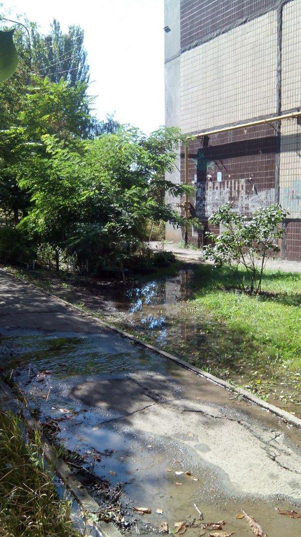 В Кривом Роге 2 недели питьевой водой поливается бурьян во дворе (ФОТО), фото-6