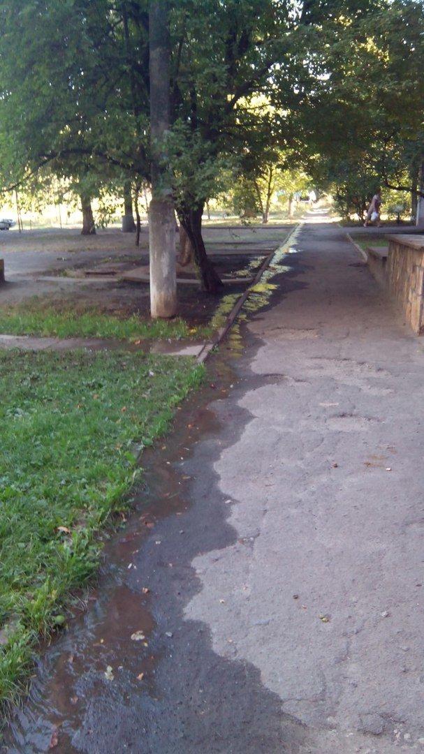 В Кривом Роге 2 недели питьевой водой поливается бурьян во дворе (ФОТО), фото-9