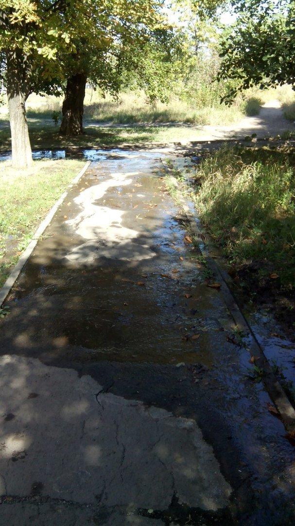 В Кривом Роге 2 недели питьевой водой поливается бурьян во дворе (ФОТО), фото-1