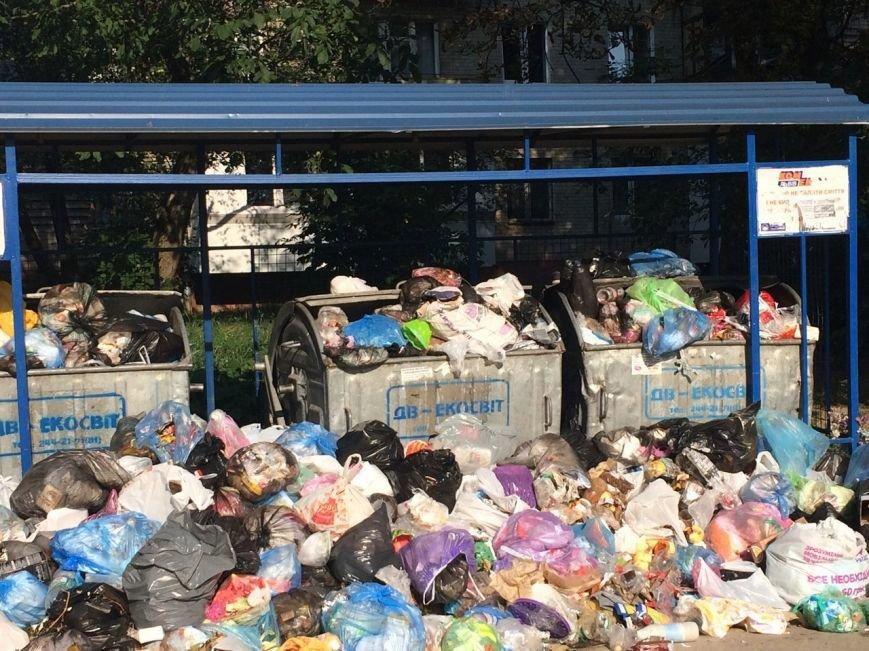На вулиці Пасічній переповнені контейнери сміття (ФОТО), фото-2