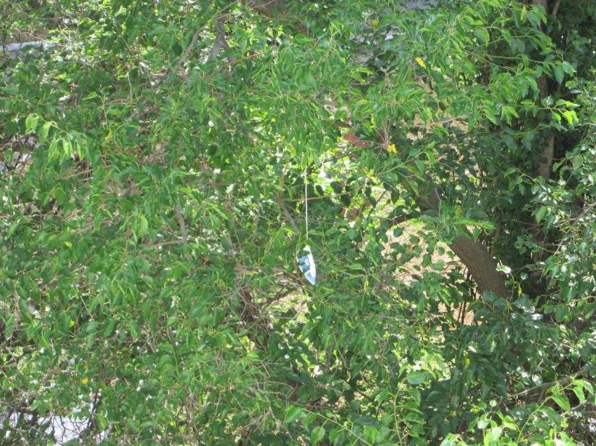 Кременчугские пожарные «спасали» застрявший на дереве утюг (ФОТО), фото-2