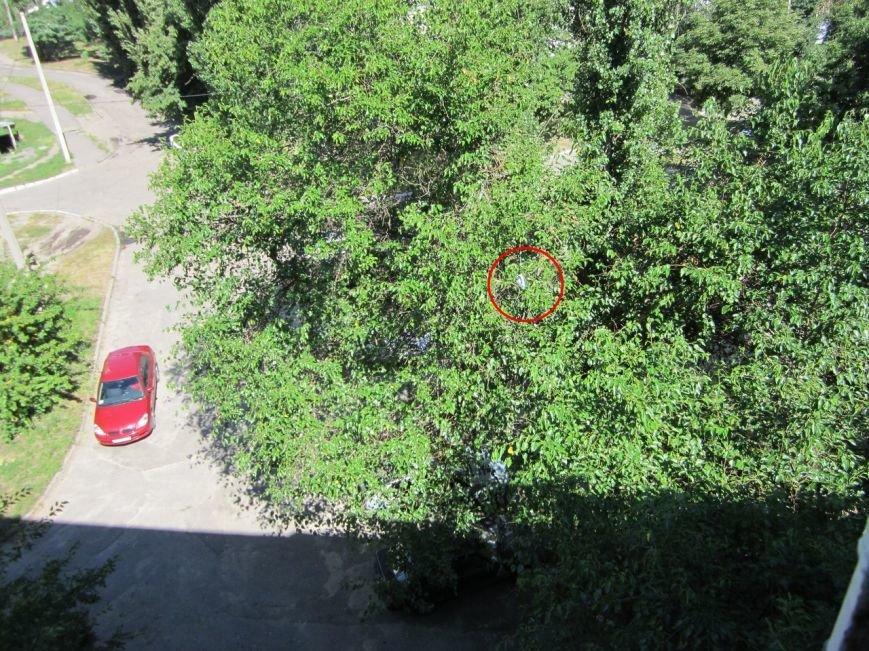 Кременчугские пожарные «спасали» застрявший на дереве утюг (ФОТО), фото-1