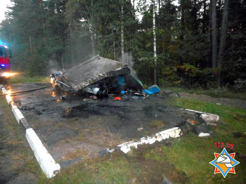 Остановка обрушилась на VW в Бобруйском районе, водитель сгорел заживо, фото-1