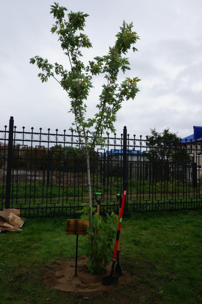 Поездка губернатора области в Корсаков совпала с поездкой Стивена Сигала, фото-1