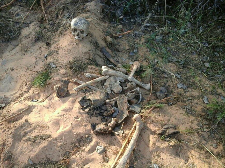 Фотофакт: как идет строительство мемориала «Урочище Пески» в Полоцке, фото-1