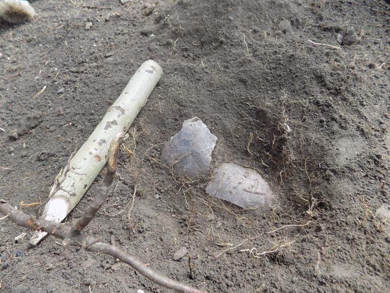Полевским школьникам предлагают стать археологами, фото-1